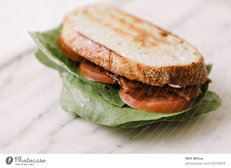 Specksalat Tomaten-Sandwich Salat Kopfsalat Belegtes Brot Mahlzeit Mittagessen grillen Lebensmittel Speise Foodfotografie Appetit & Hunger Marmor grün