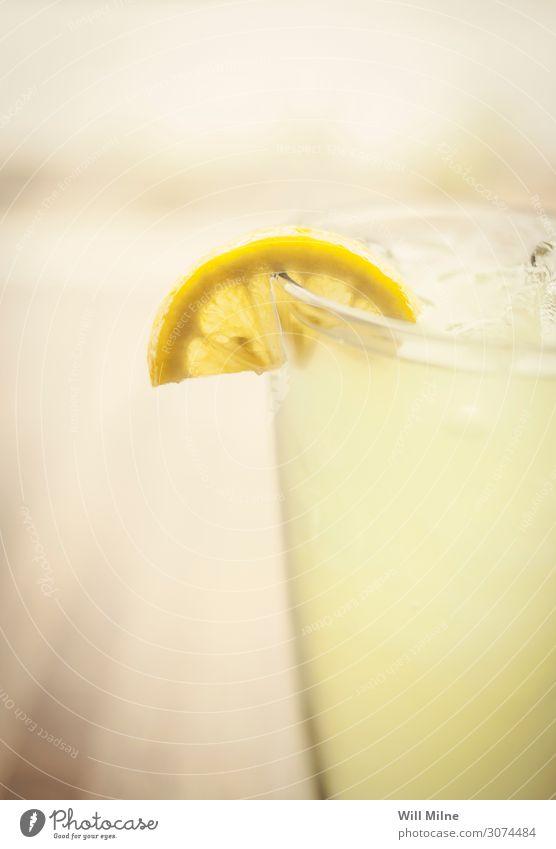 Limonade mit einer Zitronenscheibe Getränk trinken kalt Sommer gelb Zitrusfrüchte Glas Nahaufnahme