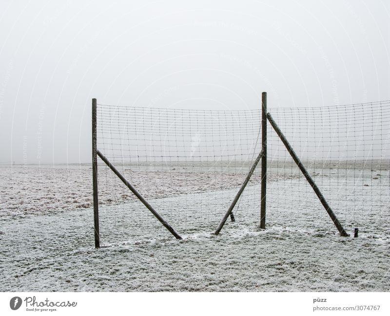 Zaun Umwelt Natur Landschaft Erde Himmel Winter schlechtes Wetter Nebel Eis Frost Schnee Feld Holz kalt weiß Traurigkeit Einsamkeit Endzeitstimmung Ferne
