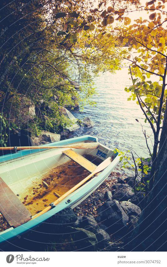 Plötzlich Herbst ruhig Ferien & Urlaub & Reisen Ausflug Umwelt Natur Landschaft Wasser Baum Seeufer Fischerboot Ruderboot Wasserfahrzeug Stein liegen alt