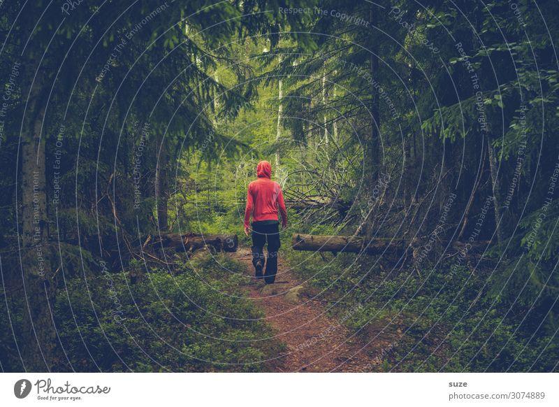 *4.300* Rotjäckchen Mensch Ferien & Urlaub & Reisen Natur Sommer Pflanze grün Landschaft ruhig Wald Gesundheit Umwelt Wege & Pfade Freiheit wild wandern Klima