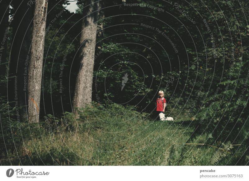 wertvoll | der beginn einer wunderbaren freundschaft Kind 3-8 Jahre Kindheit Natur Landschaft Sommer Schönes Wetter Baum Wald Tier Haustier Hund 1 entdecken