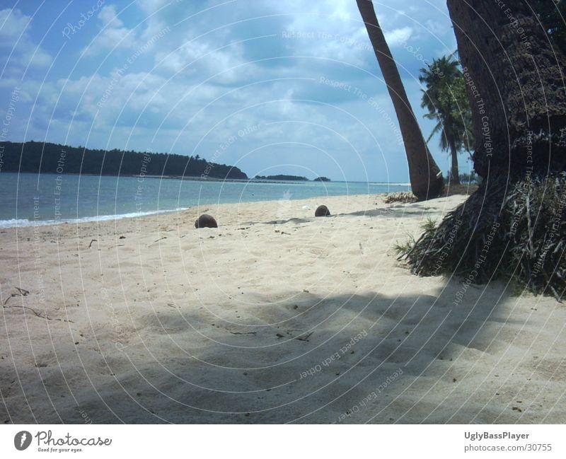 Strand Wasser Meer blau Wolken Sand Palme Kokosnuss