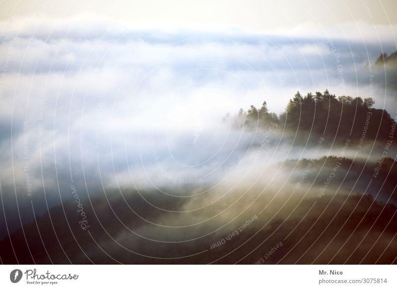 nebulöse | verschleierung Umwelt Natur Landschaft Wolken Klima Wetter Nebel Wald Hügel Berge u. Gebirge Gipfel träumen sanft Einsamkeit Nebelschleier