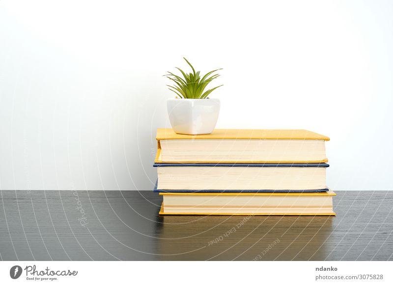 Bücher auf einen schwarzen Tisch stapeln, darauf einen Keramiktopf. Topf lesen Wissenschaften Schule lernen Klassenraum Studium Business Buch Bibliothek Pflanze
