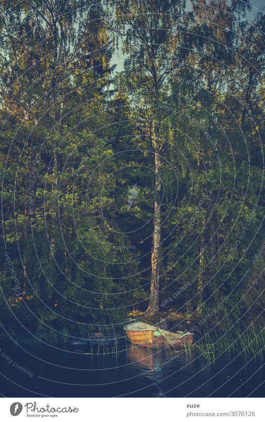 Stilles Anliegen Ferien & Urlaub & Reisen Ausflug Natur Landschaft Baum Wald Seeufer Bootsfahrt Ruderboot Wasserfahrzeug entdecken dunkel trist grün Romantik