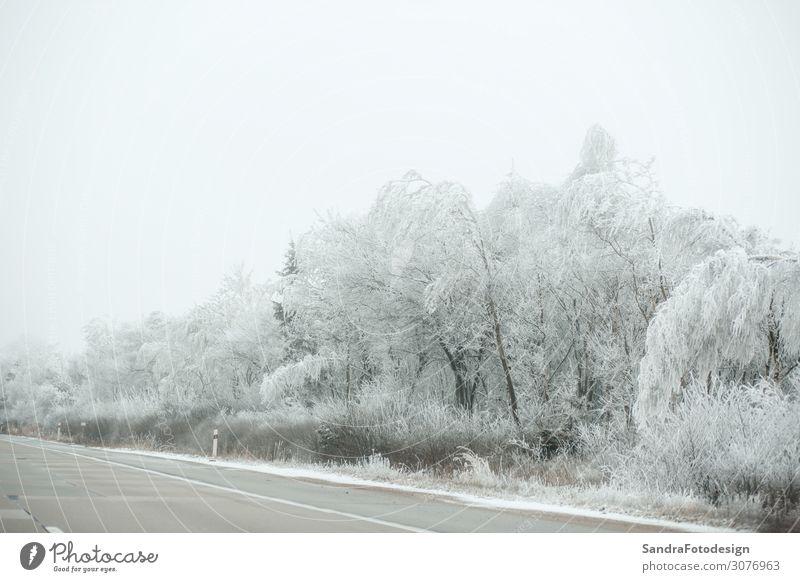 Highway in winter Ferien & Urlaub & Reisen Natur Weihnachten & Advent weiß Winter Straße kalt Schnee Deutschland Ausflug Freizeit & Hobby Verkehr Nebel Wetter