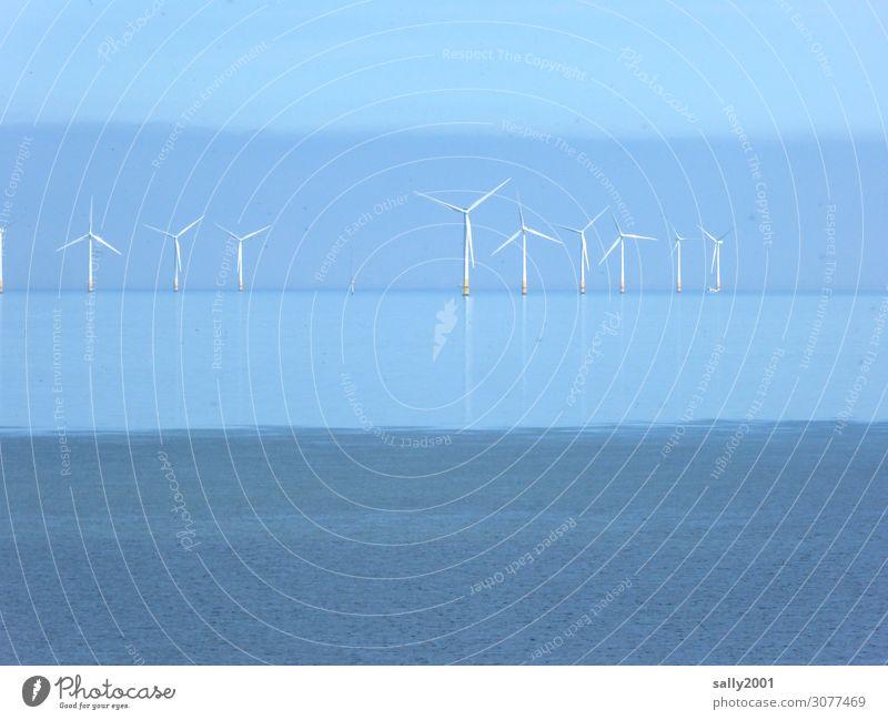 die Kraft des Windes... Windkraft offshore Windrad offshore-windpark Elektrizität Energie nachhaltig Windkraftanlage Erneuerbare Energie Energiewirtschaft