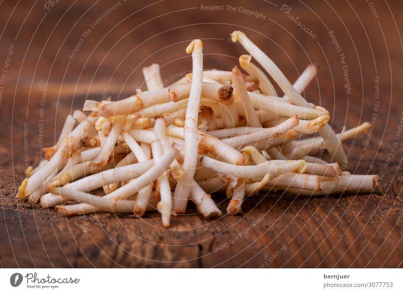 Hopfenspargel Lebensmittel Gemüse Ernährung Vegetarische Ernährung Diät Natur Pflanze Frühling Holz frisch weiß Spargel hallertau holledau Bayern Spezialitäten