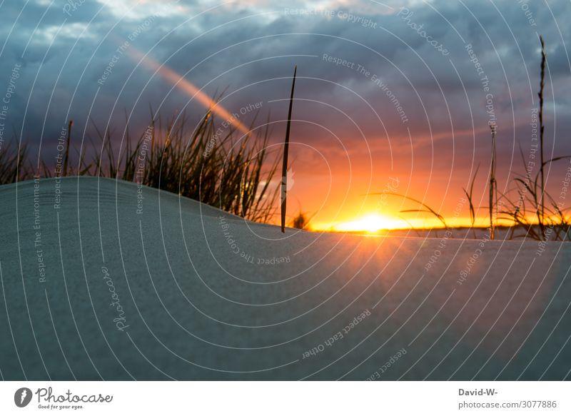 Lust auf Urlaub? Lifestyle elegant Stil Leben harmonisch Wohlgefühl Zufriedenheit Sinnesorgane Erholung ruhig Kunst Gemälde Natur Himmel Wolken Sonne