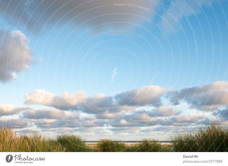 Textfreiraum zwischen den Wolken Himmel Natur Sommer schön Landschaft Meer Erholung ruhig Strand Gesundheit Leben Umwelt Frühling Küste Sand