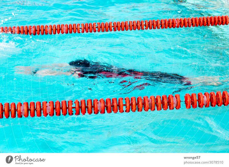 auftauchen Sport Fitness Sport-Training Wassersport Sportler Sportveranstaltung Triathlon Schwimmbad Mensch maskulin Junger Mann Jugendliche Erwachsene 1