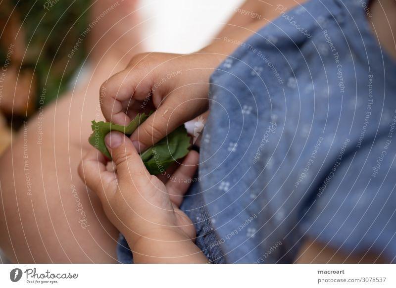 Kinderhände Kinderhand Hand Finger fangen greifen festhalten begreifen Mobilität entdecken Nahaufnahme kindlich krabbeln laufen gehen Boden dreckig Sauberkeit