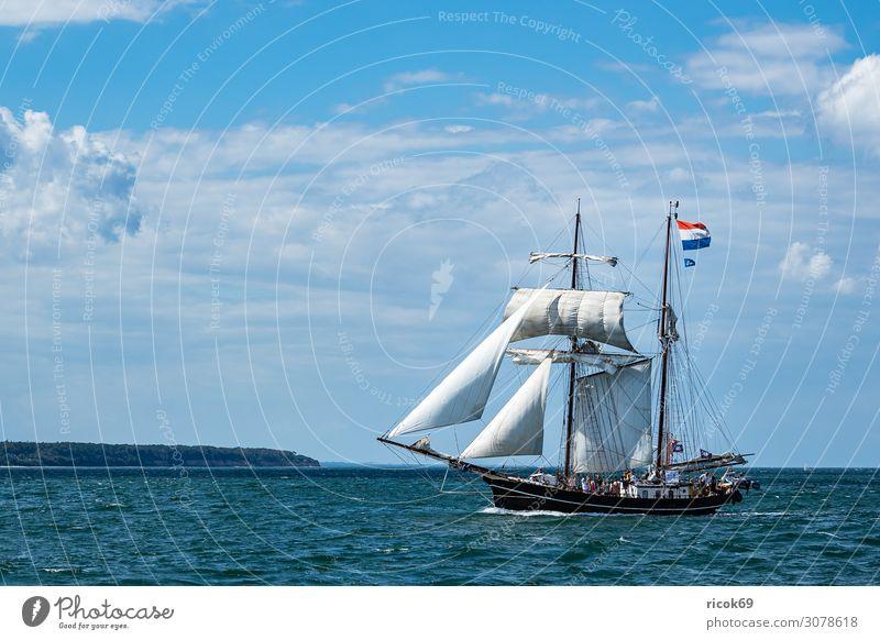 Segelschiffe auf der Hanse Sail in Rostock Erholung Ferien & Urlaub & Reisen Tourismus Sommer Meer Jahrmarkt Segeln Wasser Wolken Küste Ostsee Sehenswürdigkeit
