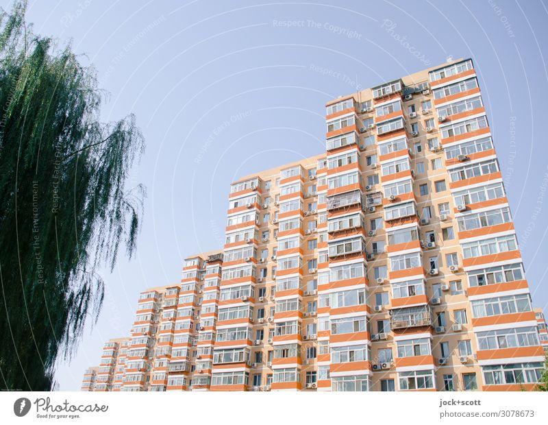 Schöner wohnen +grün Wolkenloser Himmel Baum Peking Architektur Wohnhochhaus Fassade authentisch eckig retro Schutz Stil Umwelt Gebäude Abstufung Illusion