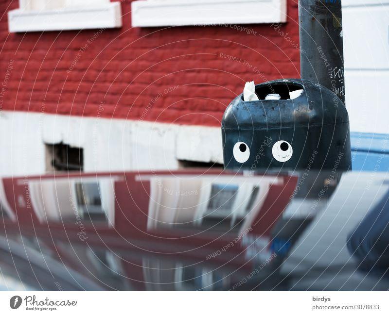 der schon wieder Stadt Haus Mauer Wand Fassade PKW Müll Müllbehälter beobachten Blick authentisch Freundlichkeit lustig nachhaltig positiv grau rot weiß Neugier