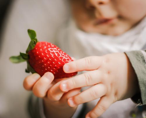 Babyhände halten rote Erdbeere Schwache Tiefenschärfe Unschärfe Licht Textfreiraum unten Textfreiraum oben Innenaufnahme mehrfarbig Farbfoto Frühling
