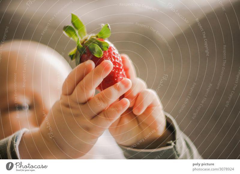 Baby hällt Erdbeere in der Hand hoch Kind Natur Gesunde Ernährung Sommer rot Freude Lifestyle Leben Umwelt Frühling Glück Körper Kindheit Fröhlichkeit Haut