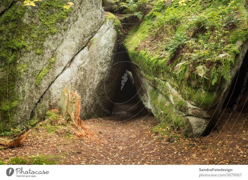 Huge rocks in the forest Freizeit & Hobby Ferien & Urlaub & Reisen wandern Natur Landschaft Park Wald entdecken Erholung laufen ruhig luisenburg labyrinth