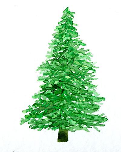 Weihnachtsbaum Aquarell Weihnachten & Advent Christbaum Kunst Kunstwerk Gemälde gemalt Wasserfarbe Pflanze Baum Tanne Tannenbaum ästhetisch grün weiß