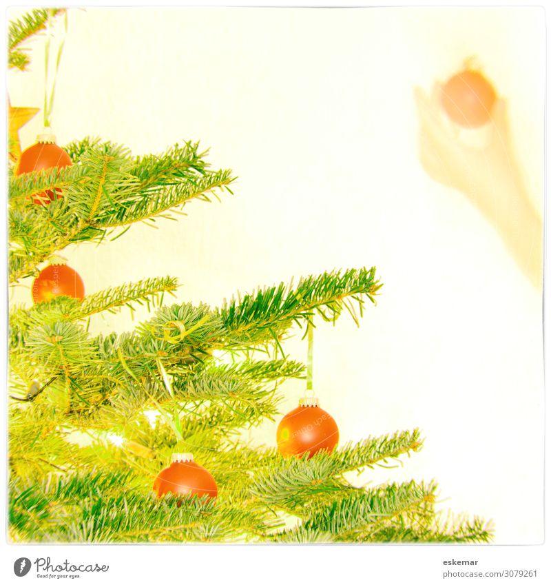 Christbaum schmücken Dekoration & Verzierung Weihnachten & Advent Weihnachtsbaum Kugel Christbaumkugel Weihnachtskugel Mensch feminin Junge Frau Jugendliche