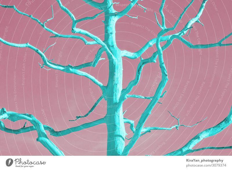 Toter Neo-Minzbaum im Duotone Pop-Art Stil auf Pink Design exotisch Sommer Tapete Kunst Natur Pflanze Baum Wüste hell trendy modern grün rosa Farbe Kreativität