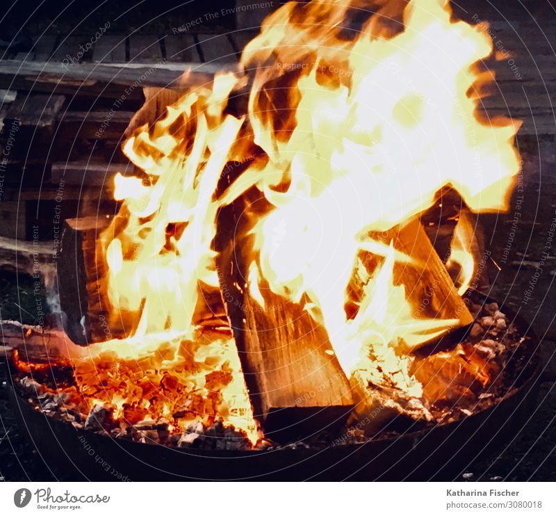 Feuer Urelemente Frühling Sommer Herbst Winter Holz heiß hell Wärme braun gelb orange rot weiß Warmherzigkeit Feuerstelle Lagerfeuerstimmung Flamme Glut glühen