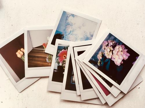 Sofortbilder Pflanze Frühling Sommer Herbst Winter alt blau gelb grau orange rosa rot türkis weiß Vergangenheit Vergänglichkeit Polaroid Sofortbildkamera