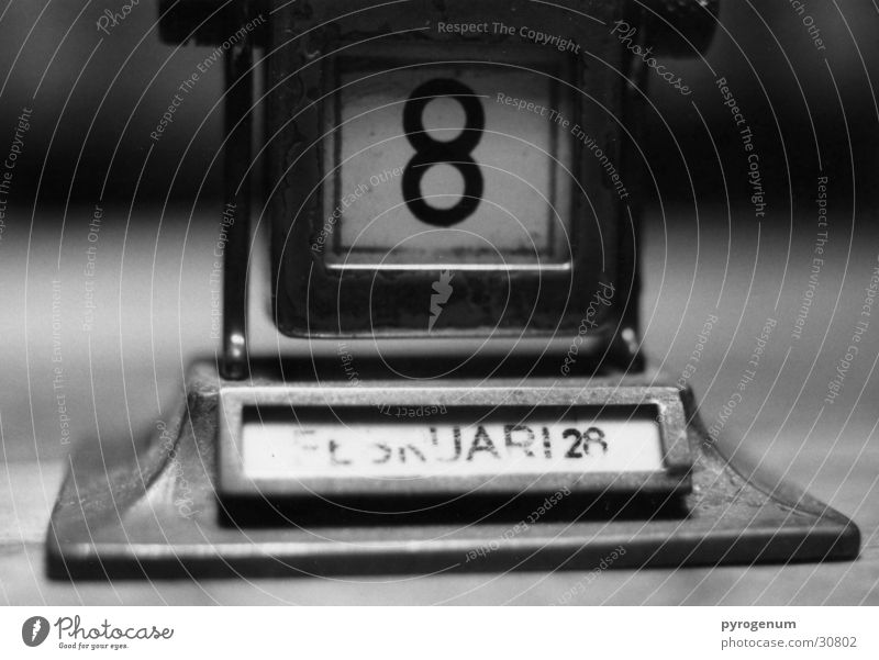 Kalender weiß schwarz Perspektive Ziffern & Zahlen Niveau Kalender Tiefenschärfe 8 Monat