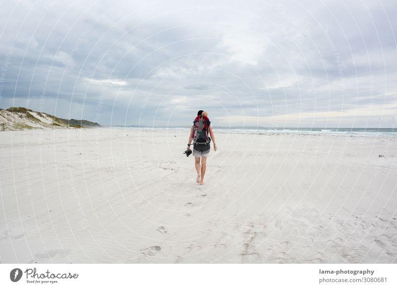 Menschenleer am Meer Neuseeland Strand Sand Sandstrand Sonnenschein Badeurlaub Badewetter Sommerurlaub Ferien & Urlaub & Reisen Erholung Natur Schönes Wetter