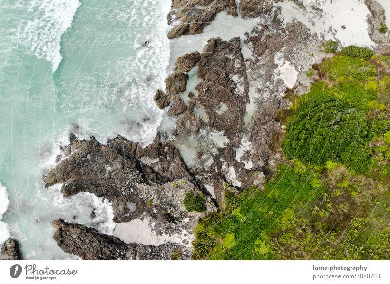 Wilde Küste Wellen Meer Neuseeland wild Wildnis Luftaufnahme Drohnenaufnahme Felsen Vegetation Elemente Brandung Wasser Natur Gischt Urelemente abstrakt