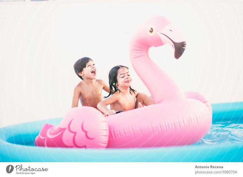 Flamenco-Sommer lustig für kleine Kinder im heimischen Gartenpool Lifestyle Freude Schwimmbad Schwester Familie & Verwandtschaft schreien authentisch