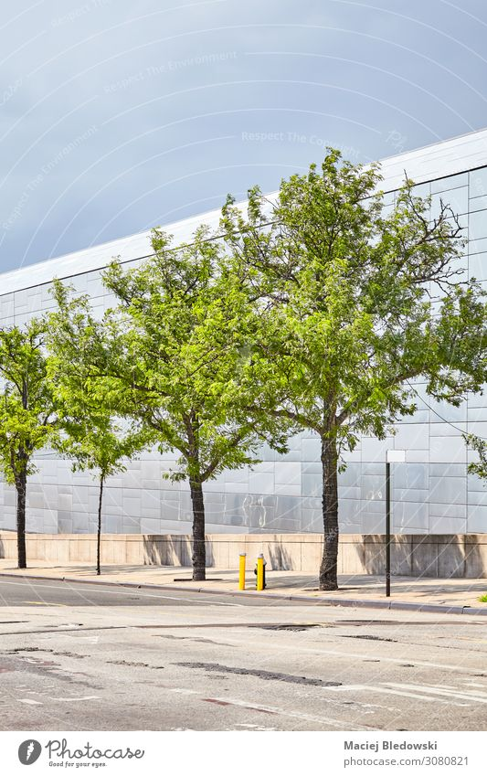 Bäume an einer Straße in New York City, USA. Himmel Baum Stadt Gebäude Architektur Fassade modern Zufriedenheit einzigartig nachhaltig Zukunft Großstadt