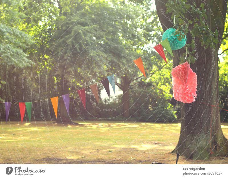 Girlande und Pompoms zum Geburtstag im Park Freude Party Veranstaltung Feste & Feiern Natur Sommer Schönes Wetter Baum Garten Wiese Wald Dekoration & Verzierung
