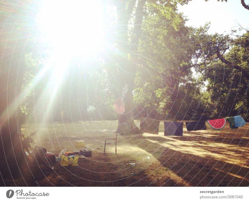 Sommerliche Wiese mit Bäumen, Gegenlicht und Decken auf einer Leine sommerlich sommerwiese Park Picknick lightleak Wäscheleine entspannung Teppich Stuhl