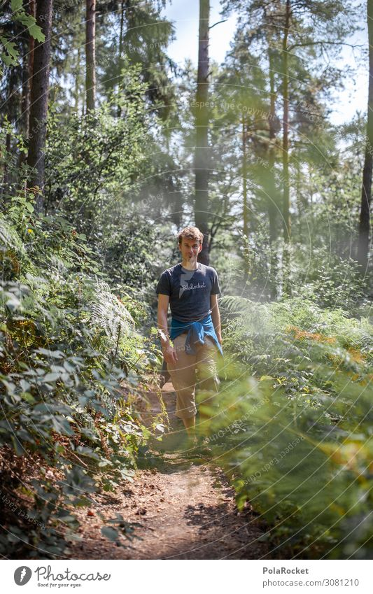 #A2# Nature Boy Mann Pflanze Landschaft Baum Wald Umwelt Wege & Pfade wandern ästhetisch laufen Sachsen Sächsische Schweiz