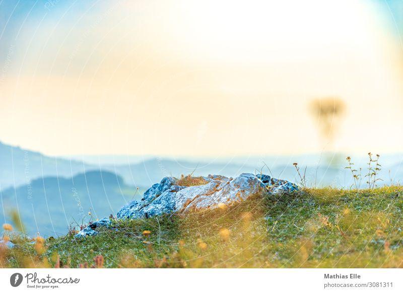 Fels im Sonnenlicht Ausflug Abenteuer Ferne Freiheit Sommerurlaub Berge u. Gebirge wandern Landschaft Sonnenaufgang Sonnenuntergang Gras Sträucher Wiese Hügel