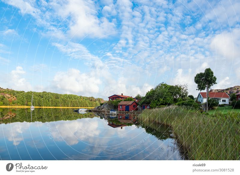 Spiegelung im Wasser in Nösund auf der Insel Orust in Schweden Erholung Ferien & Urlaub & Reisen Tourismus Sommer Meer Haus Natur Landschaft Wolken Baum Küste
