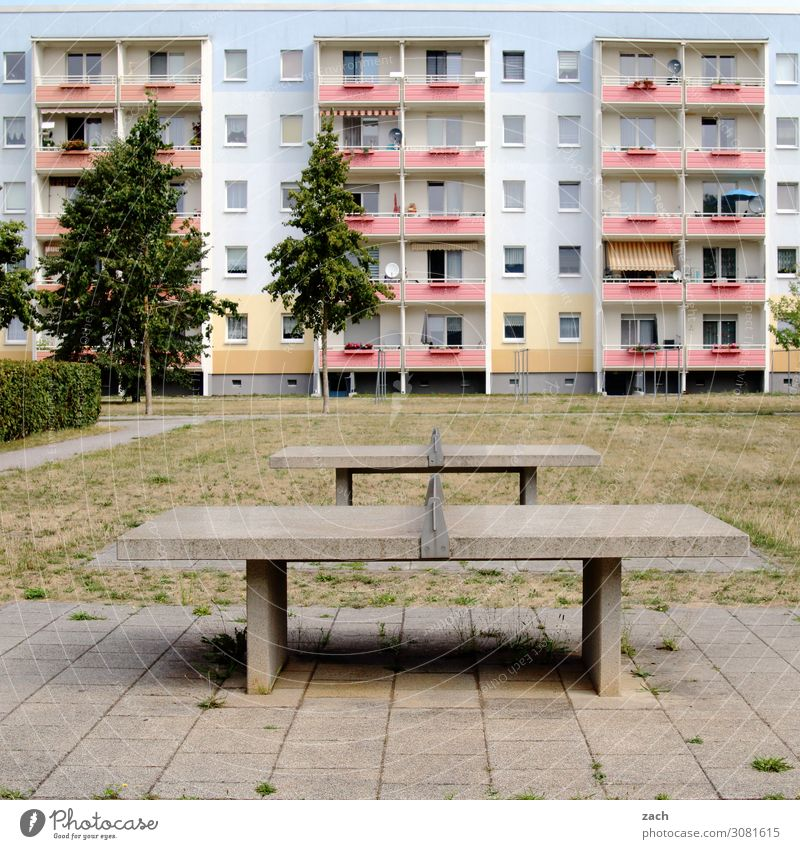 Plattenbau Stadt Baum Haus Einsamkeit Wand Wiese Sport Spielen Mauer Fassade Häusliches Leben Hochhaus trist Wandel & Veränderung Stadtzentrum Balkon