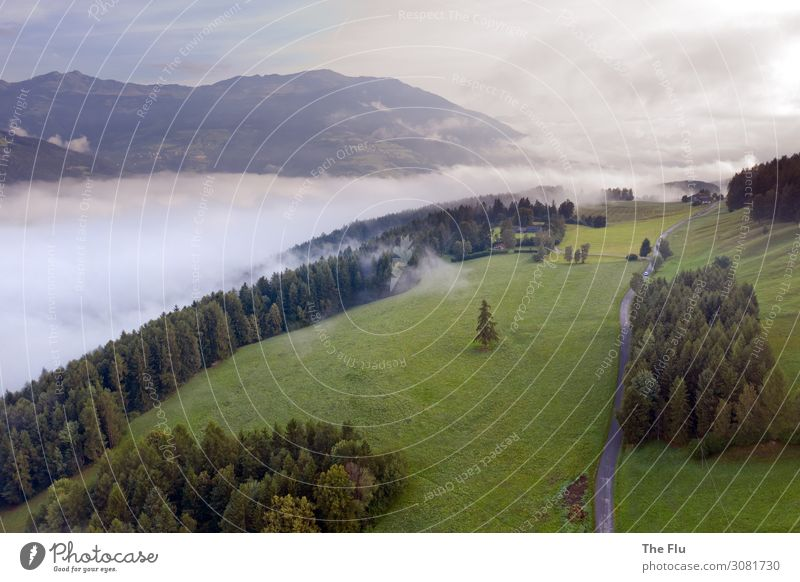 Morning has broken Ferien & Urlaub & Reisen Tourismus Ferne Freiheit Sommer Sommerurlaub Sonne Natur Landschaft Pflanze Himmel Wolken Sonnenaufgang