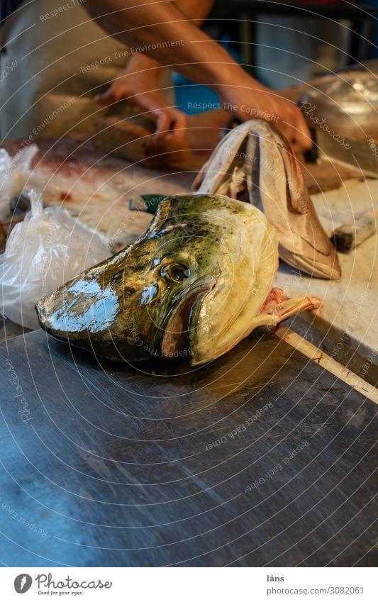 Fischverkauf Lebensmittel Ernährung Mensch 1 Insel Sizilien Italien kaufen Fischmarkt verkaufen Angebot Farbfoto Außenaufnahme Textfreiraum unten Tag