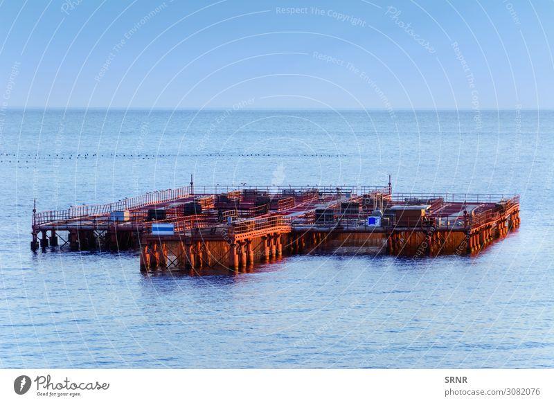 Muschelzucht Meer Industrie Umwelt Natur Horizont See maritim Schwarzes Meer Konstruktion ökologisch Ökosystem Bauernhof keine Person Wasser Wasserfläche