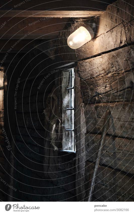 dark side of allgäu Natur Haus Gebäude Holz dreckig dunkel Stall Lampe Bauernhof Fenster Gang Balken Glühbirne Arbeit & Erwerbstätigkeit Viehhaltung Besenstiel