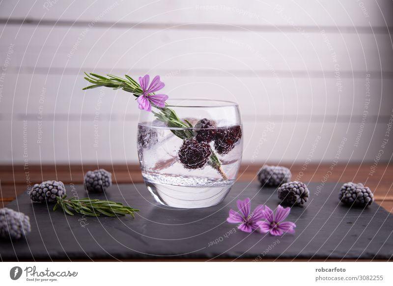 Gin Tonic Frucht Getränk Alkohol Reichtum elegant Sommer Feste & Feiern grün rosa rot schwarz weiß Brombeeren vereinzelt Cocktail Glas trinken Eis kalt Wasser