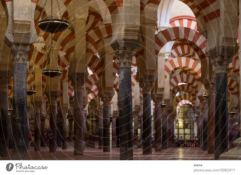 Columns in the World Heritage Mezquita in Cordoba Kirche Dom Palast Burg oder Schloss Religion & Glaube Andalusia Holiday Moshe Spain arabesque building