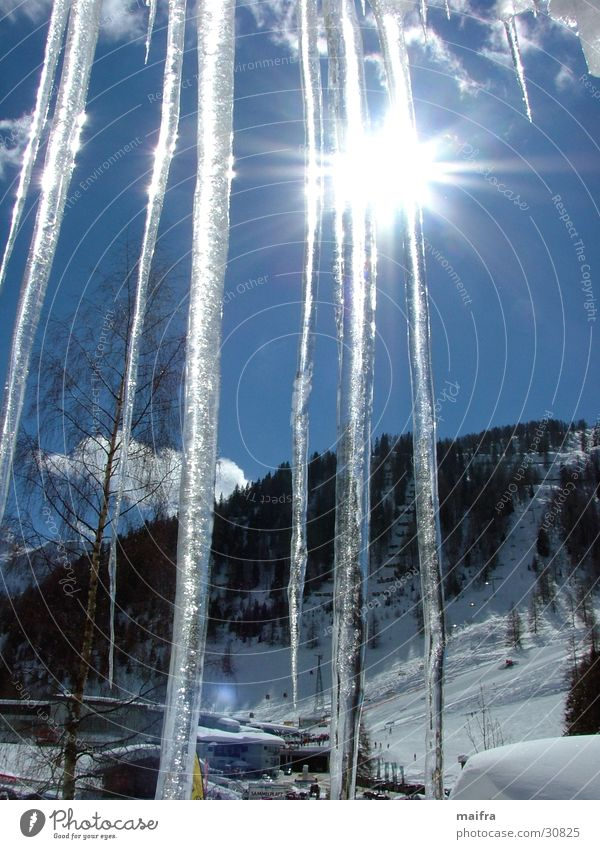 Eiszapfen in der Sonne Winter Schnee Berge u. Gebirge Wolkenloser Himmel