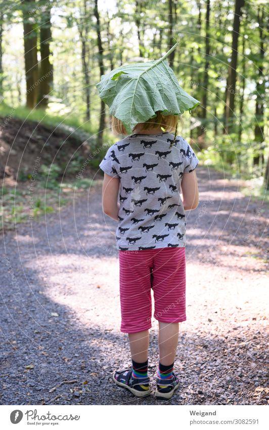 Waldfee Ferien & Urlaub & Reisen Abenteuer Sommer Sommerurlaub Kindererziehung Kindergarten lernen Mädchen Kindheit Spielen Freundlichkeit Fröhlichkeit frisch