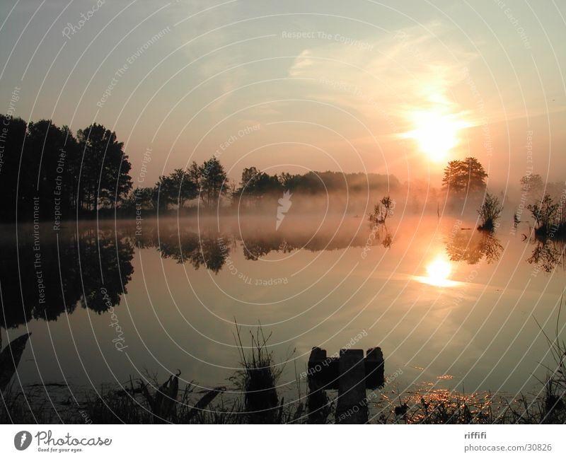Morgenstimmung See Sonnenaufgang ruhig Nebel Reflexion & Spiegelung Wolken Morgendämmerung