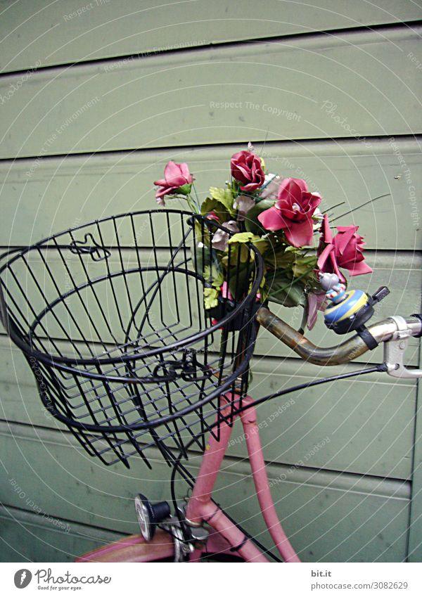 Rosa Fahrrad mit Blumen und Korb, an einer Holzwand. Mauer Wand Verkehr Verkehrsmittel Fahrradfahren Straße Freude Glück Fröhlichkeit Zufriedenheit Lebensfreude
