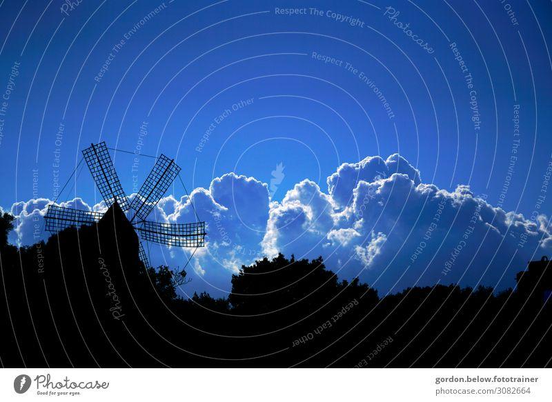 Wolkenfantasien Himmel Ferien & Urlaub & Reisen Natur Sommer blau weiß Landschaft Baum Erholung Ferne schwarz Glück Tourismus außergewöhnlich Freiheit